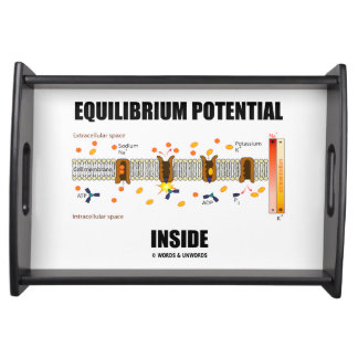 Equilibrium Potential Inside Active Transport Serving Tray