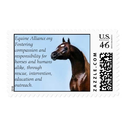 Equine Alliance Stamps
