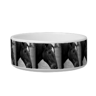 Equine Beauty Bowl