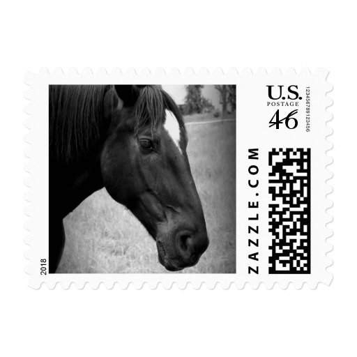 Equine Beauty Stamp