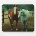 Equine Friends Mouse Pads