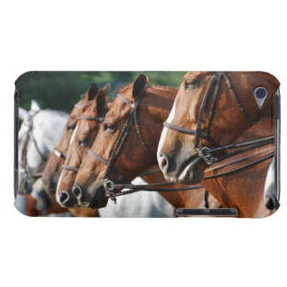 Equine Horse Show iTouch Case iPod Case-Mate Case
