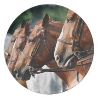 Equine Horse Show Plate