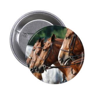 Equine Horse Show Round Button