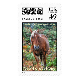 Equine-lover Horse-themed Animal Gifts Stamps