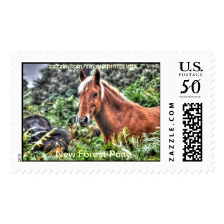 Equine-lover Horse-themed Animal Gifts Postage