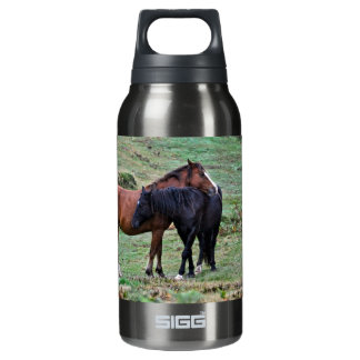 Equine-lover Horse-themed Animal Insulated Water Bottle