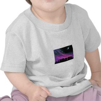 Equinox T Shirt