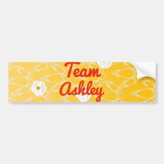 Equipo Ashley Pegatina Para Auto