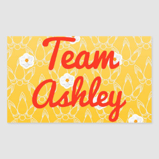 Equipo Ashley Pegatina Rectangular