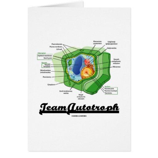 Equipo Autotroph (biología celular de la planta) Felicitación