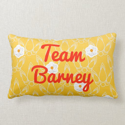 Equipo Barney Cojin