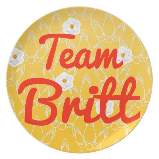 Equipo Britt Plato Para Fiesta
