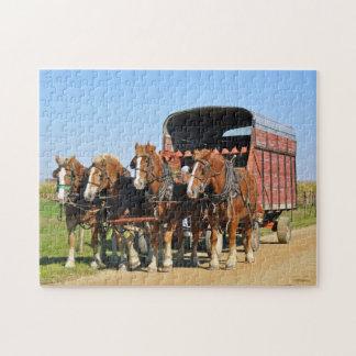 Equipo de Amish de cuatro Puzzles