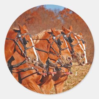 Equipo de caballos en campo pegatina redonda