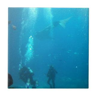 equipo de submarinismo azulejo cuadrado pequeño
