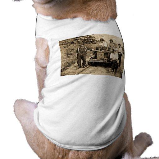 Equipo del carril del vintage circa 1890s-1910 ropa de perro