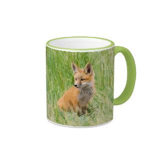 Equipo del Fox rojo en hierba cerca de la guarida Taza A Dos Colores