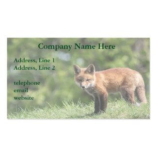 Equipo del Fox rojo Tarjetas De Visita