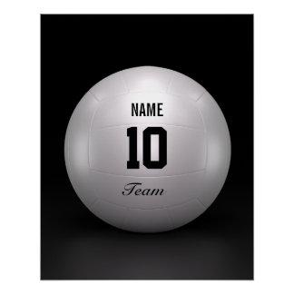 Equipo del voleibol perfect poster
