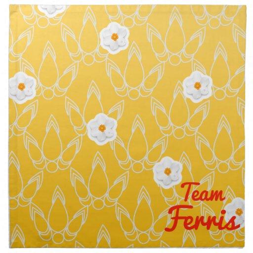 Equipo Ferris Servilleta