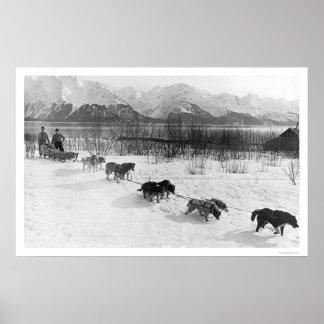 Equipo fornido Alaska 1918 del perro Poster
