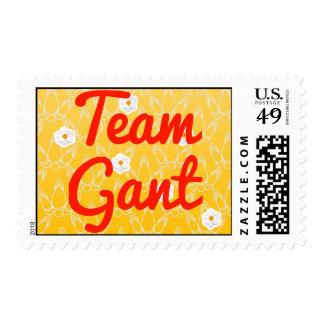 Equipo Gant Envio