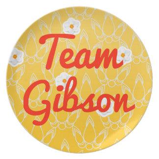 Equipo Gibson Platos De Comidas