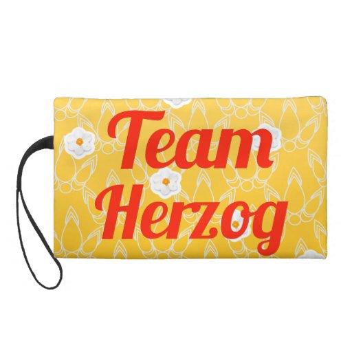 Equipo Herzog