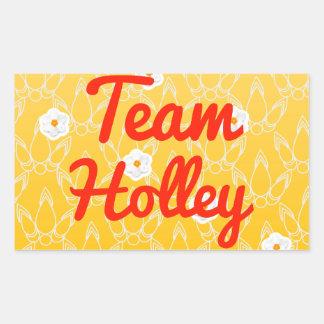 Equipo Holley Rectangular Pegatinas