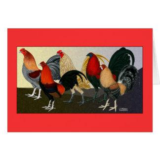 Equipo ideal del gallo tarjeta