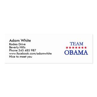 Equipo Obama 2012 Tarjetas De Visita Mini