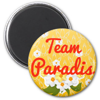 Equipo Paradis Imanes Para Frigoríficos