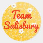 Equipo Salisbury Pegatinas Redondas