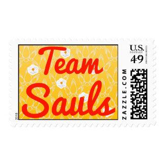 Equipo Sauls
