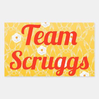 Equipo Scruggs Pegatina