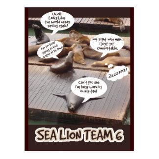 Equipo seis del león marino tarjetas postales