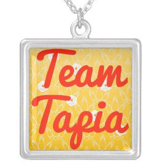 Equipo Tapia Grimpola