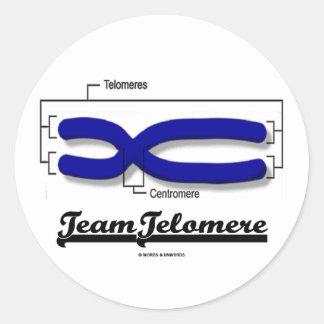 Equipo Telomere (humor de la biología) Pegatina Redonda
