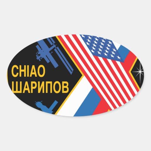 Equipos de la expedición al ISS:  Expedición 10 Pegatina Ovalada