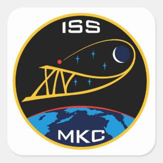 Equipos de la expedición al ISS:  Expedición 14 Pegatina Cuadrada