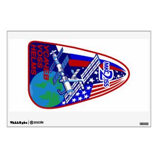 Equipos de la expedición al ISS:  Expedición 2 Vinilo