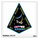 Equipos de la expedición al ISS:  Expedición 33