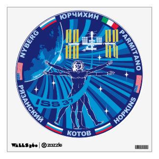 Equipos de la expedición al ISS:   Expedición 37 Vinilo