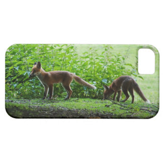 Equipos del Fox iPhone 5 Case-Mate Carcasas