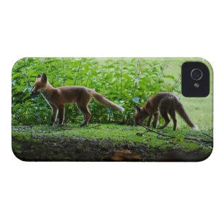 Equipos del Fox iPhone 4 Coberturas