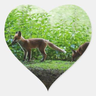 Equipos del Fox