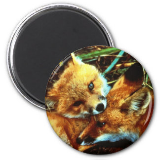 Equipos del Fox rojo Imán Redondo 5 Cm