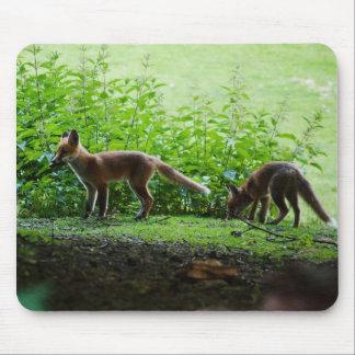 Equipos del Fox Alfombrilla De Ratones