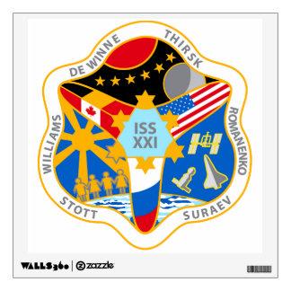 Equipos del ISS:  Expedición 21 Vinilo
